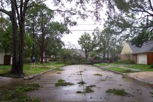 Our driveway is on the left...we had trees down on two of three sides - this is one of them.