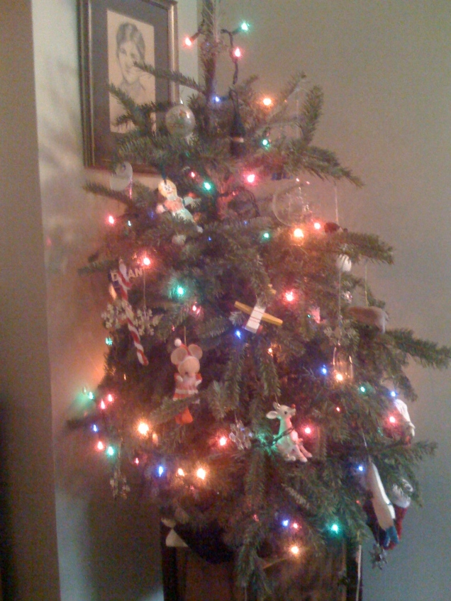 I finally took down my Christmas tree. It was a dried-up mess.