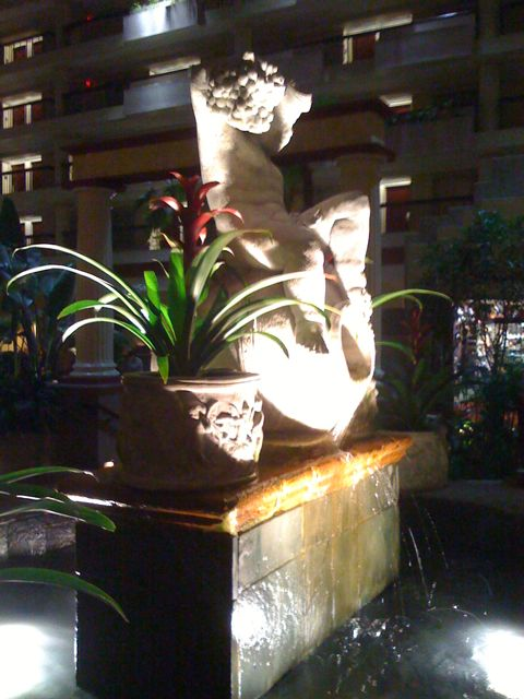 My friend Alisa was in town for a conference this week, and I met her at her hotel to go to dinner. This is the sculpture/fountain from the hotel lobby. Fancy, no?