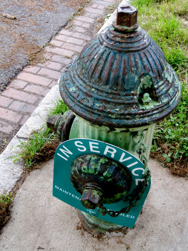 May 11: I'm more than slightly disturbed by the fact that DC's hydrants need signs to indicate which are in service.