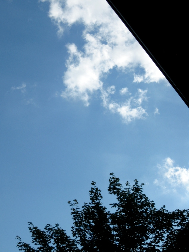 June 6: As I sat reading on the porch, this was my vantage point of the lovely blue sky.