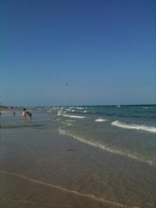Plan a trip to the beach!