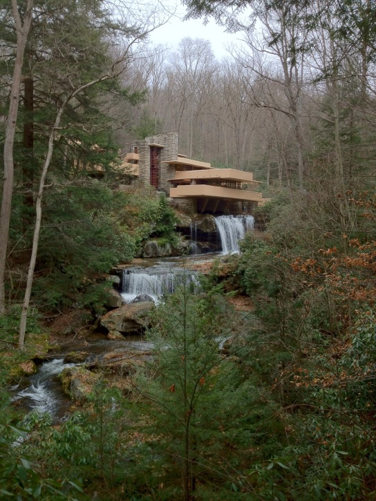 My postcard shot of Fallingwater.