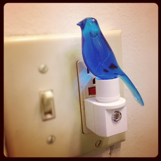 Blue canary in the outlet by the lightswitch...