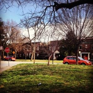 Today's #marchphotoaday: My neighborhood.