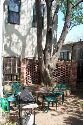 The back patio, complete with apricot tree.