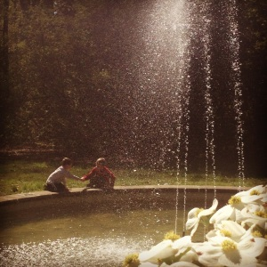A seemingly (but not actually) calm moment by the fountain in the dogwood collection.