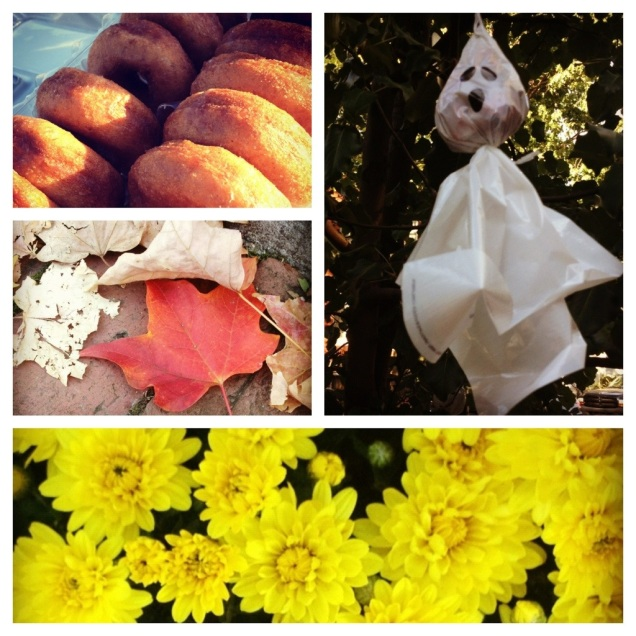 Sunday Snapshot: Fall Things