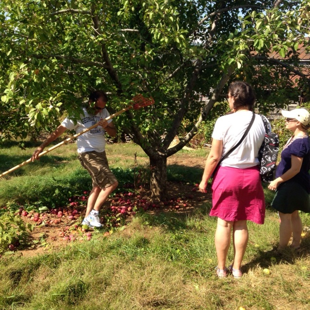 John working the apple-picking device while sprite and Nicole look on.