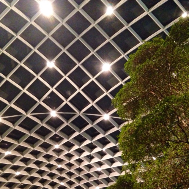 The Kogod Atrium ceiling. (Entirely unrelated to this post. I just like the picture, which I took a couple of days ago.)