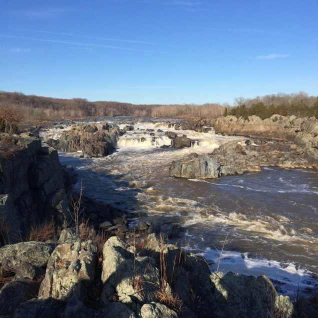 Friday was a gorgeous, sunny day at Great Falls.